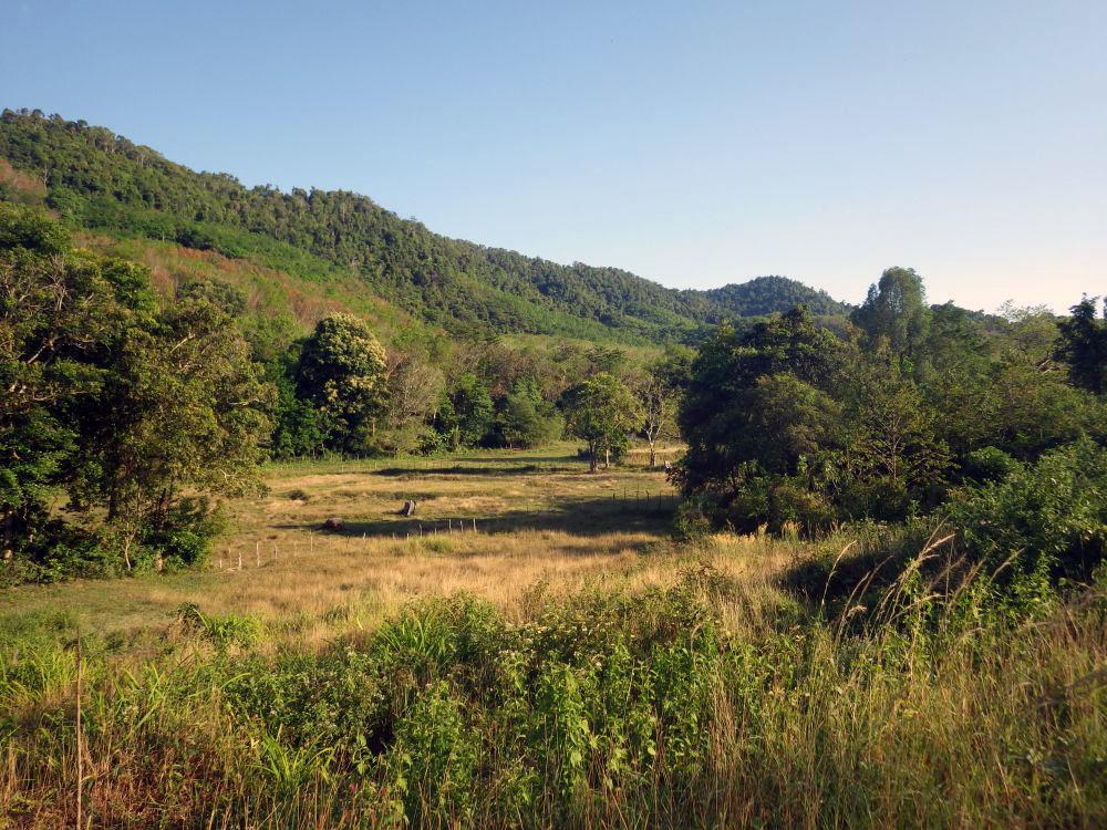 Natur pur: Landesinnere von Koh Yao Yai